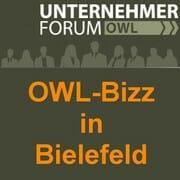 Owl Bizz